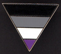 Asexuality Triangle Enamel Lapel Pin